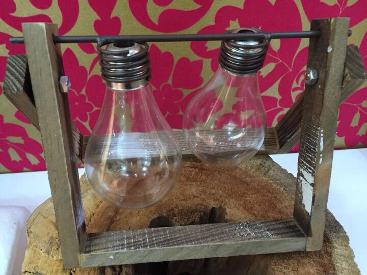 时光巴士 创意花瓶玻璃摆件办公桌装饰品家居客厅房间卧室书柜摆设 双灯泡款水培瓶 晒单图