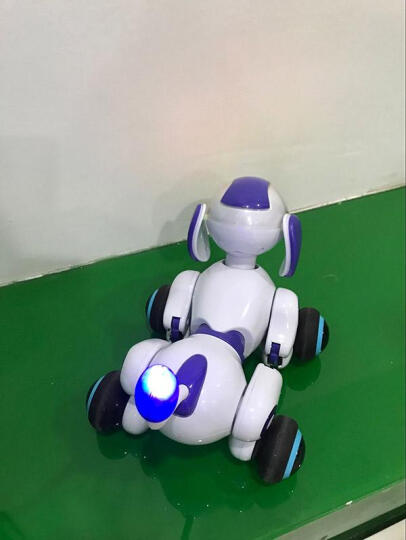 shifeng 108种互动式陪伴智能玩具机器人 儿童电动机器智能狗2语音交互 标配 晒单图