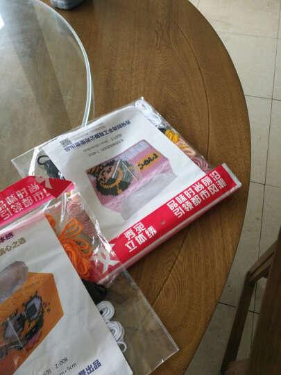 秀宛立体3D十字绣套件装新款卡通系列家居手工艺术抽纸巾盒新店促销特价包邮 海绵宝宝 Z-008 晒单图