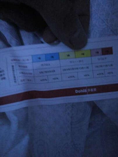 多喜爱(Dohia)被芯 100%蚕丝被子 夏被 薄被子 佛罗伦萨   203*229cm 晒单图