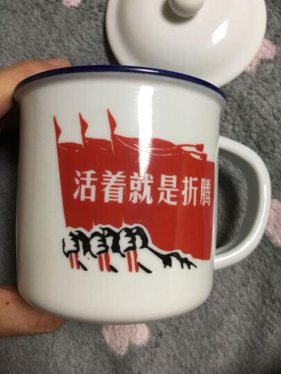 陶沁泉 景德镇陶瓷茶杯 仿搪瓷杯 陶瓷杯子水杯 带盖马克杯创意定做办公杯礼品杯茶缸定制杯 活着就是折腾1个杯 晒单图