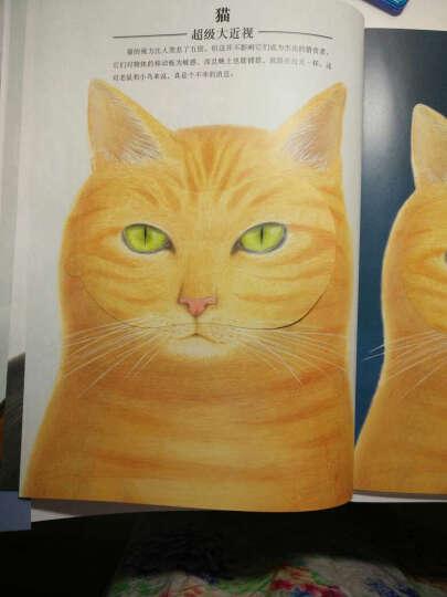 信谊世界精选图画书:动物眼中的世界 晒单图
