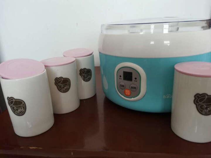 小熊(Bear)酸奶机 家用全自动纳豆机酸奶发酵菌微电脑可定时不锈钢内胆送陶瓷4分杯 SNJ-560 晒单图