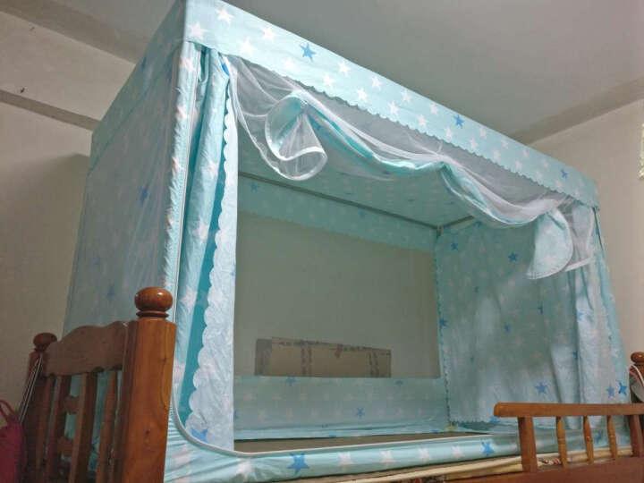 年年好学生蚊帐宿舍床帘上铺下铺遮光寝室单人床0.9m1.2米床子母床上下床纹帐拉链三开门不锈钢管支架 猫咪 1.2米床上铺 宽1.2*长1.9*高1.1米 晒单图