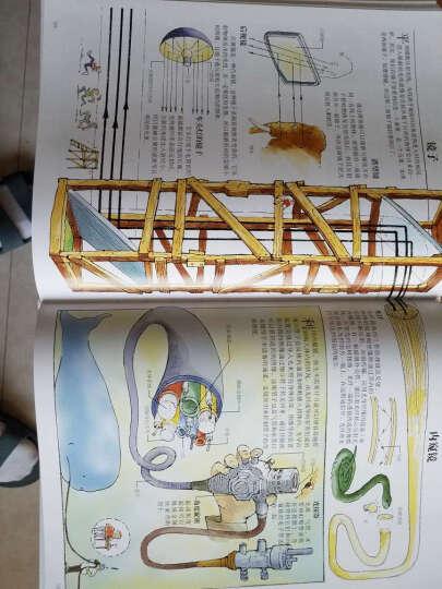 【正版包邮】DK万物运转的秘密 给青少年的物理世界入门书 [7-14岁] 晒单图