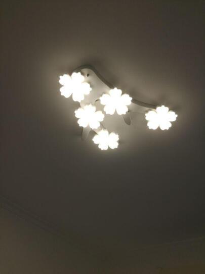 灯屋 北欧创意客厅吸顶灯现代简约时尚风格个性铁艺餐厅卧室书房办公室LED梅花灯具 8头 造型见详情 无极调光 晒单图