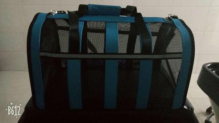 猫包狗包宠物包外出包旅行猫袋笼子狗狗背包泰迪便携带包箱包用品 青春蓝 L号48*28*28适合8-12斤 晒单图