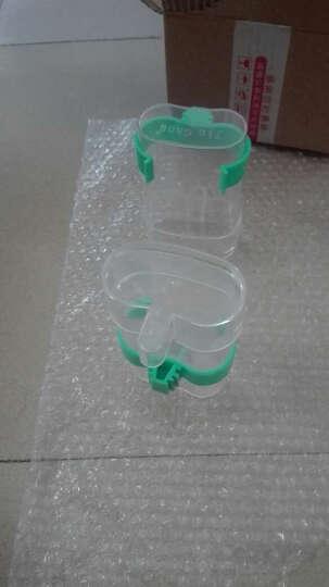 鸽子鸟用饮水器水壶鹦鹉八哥自动喂食下料器用品用具 绿色款小号单个 晒单图