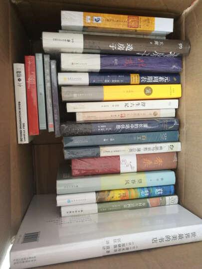 权振东:探险家(CD) 晒单图
