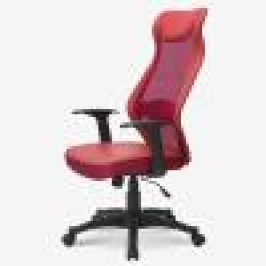 联丰(lianfeng) 电脑椅 办公椅子 家用网椅人体工学椅职员椅 DS-8602红 晒单图