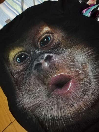 夏季摇滚重金属嘻哈个性搞笑短袖T恤男3d立体印花图案动物恶魔骷颅鬼猩猩狼头体恤加肥加大码男半袖T恤衫 奔跑狼短袖 170/M(110-130斤) 晒单图