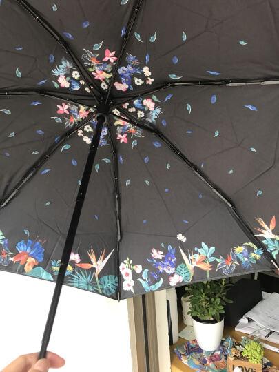 蕉下(BANANA UMBRELLA) Black系列(花眠)五折晴雨伞 双层伞布Baby小黑伞 防晒防紫外线遮阳伞 晒单图