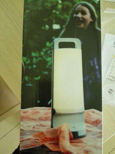 EcoWalker 太阳能充电LED户外手提灯野营灯露营灯帐篷灯应急灯营地灯探照灯小夜灯 纯洁白色 晒单图