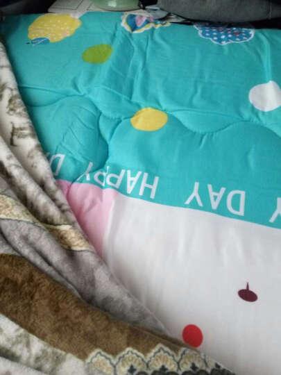 九洲鹿家纺 榻榻米可折叠学生加厚防滑印花床垫双人床褥垫子 大白兔-1.5x2m 晒单图