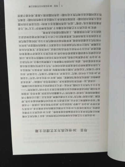 西方文艺理论名著教程(第三版)(下) 晒单图