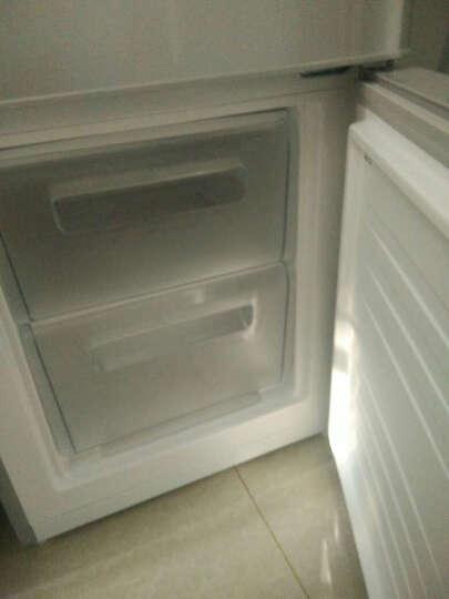 美菱(MeiLing) BCD-206L3CT 206升中门软冷冻 家用节能省电 三门冰箱(亚光银) 晒单图