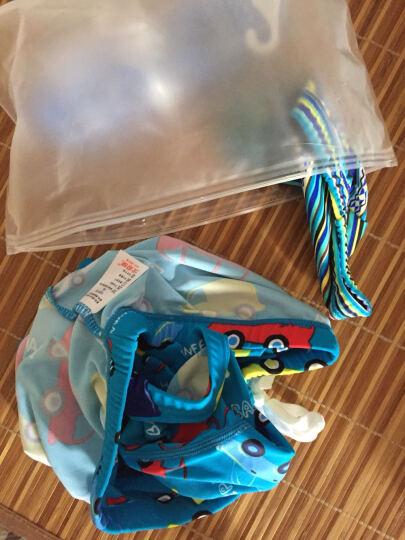 北极绒儿童泳衣男童泳裤平角男孩大小童宝宝温泉泳装带帽 蓝色 XL 晒单图
