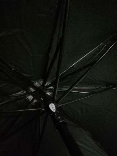天堂伞(UPF50+)防紫外线太阳伞女男通用蕾丝花边晴雨伞蘑菇遮阳伞33051E娴淑佳丽 3#绿色 晒单图