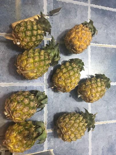 南山篮 新鲜小菠萝 4kg 迷你小凤梨 晒单图