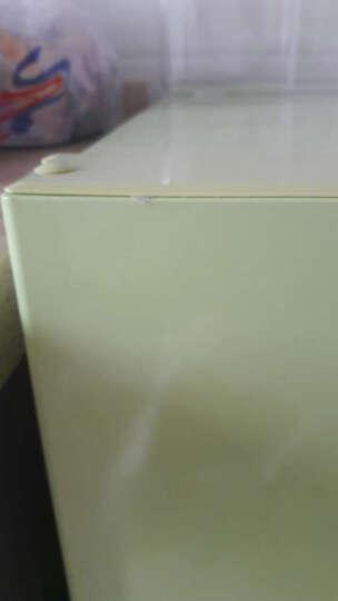 尊贵(ZUNGUI)BCD-82C 82升 冷藏冷冻双门家用迷你小冰箱 果绿色 果绿色 晒单图