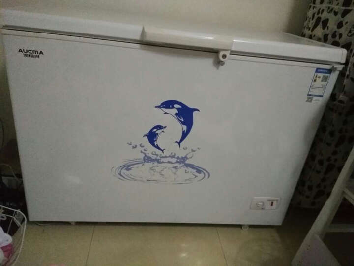 澳柯玛(AUCMA)323升带锁冷藏冷冻转换 变温商用冷柜 冰柜 BC/BD-323NE 晒单图