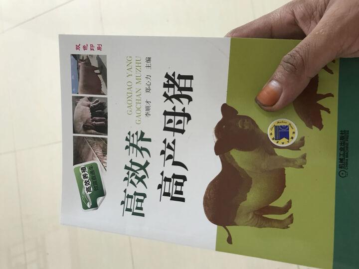 正版现货 高效养高产母猪 养猪技术书籍 母猪养殖技术大全 母猪疾病防治 科学猪饲料配制  晒单图