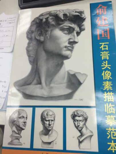 俞建国石膏头像素描临摹范本1 晒单图