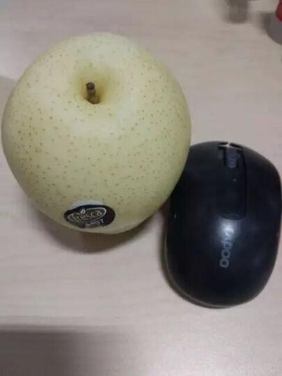晋州长城 黄冠梨 河北晋州 6个 单果约335g 新鲜水果 晒单图