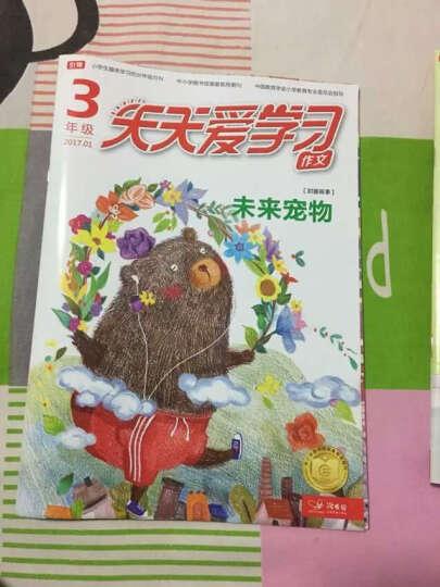 天天爱学习(三年级)杂志预订 2019年10月起订 半年6期 小学生读物 学习辅导 杂志铺 晒单图