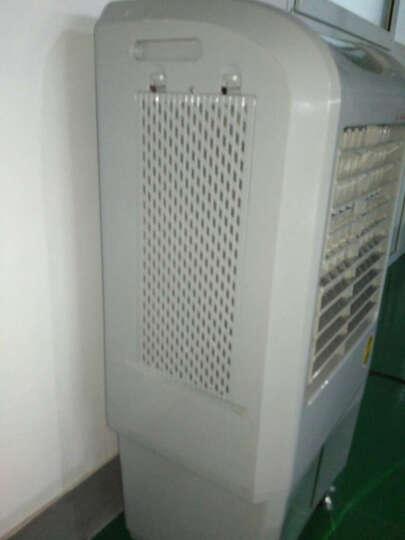 活仕(Auswoods)加湿器 30L大水箱 无雾加湿 净化型 工业/办公/库房加湿机 WH-J2020 晒单图