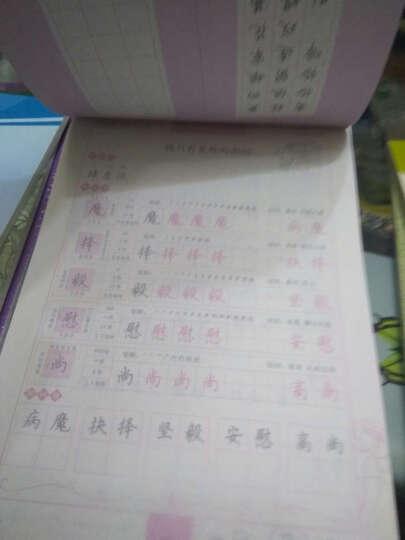 2017春五年级下墨点字帖小学生同步写字课课练(苏教版)楷书 晒单图