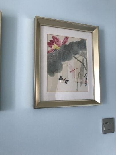 吉运来客厅装饰画卧室墙画沙发背景挂画餐厅走廊玄关床头壁画中式有框国画齐白石 香槟银GHXSCY005-13 外框尺寸57*70cm 晒单图