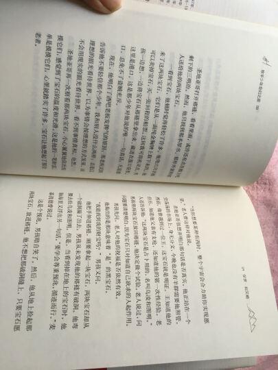 牧羊少年奇幻之旅精装新版 朗读者王源推荐(巴西)柯艾略古籍文化哲学宗教 文学小说书籍 晒单图