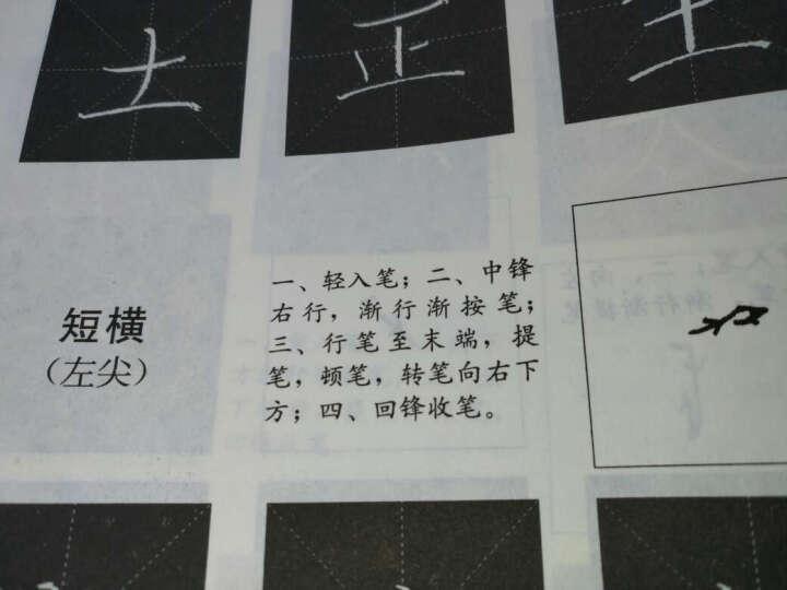 粉笔字实训教程/王崇举 晒单图