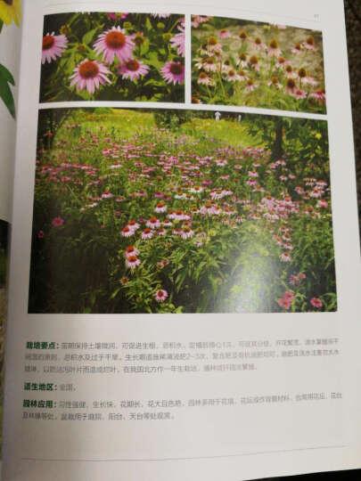 园林植物图鉴丛书:宿根花卉 晒单图