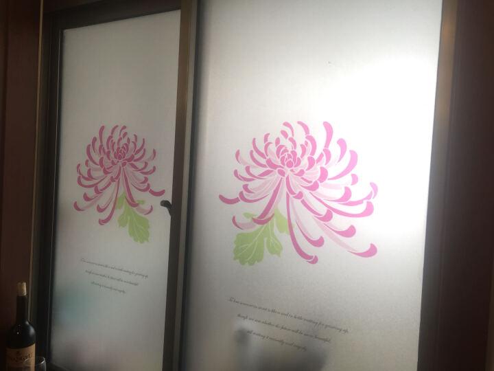 蓝瑞田园磨砂玻璃贴膜 公司办公室隔断玻璃移门咖啡店铺自粘窗户窗花纸 花语 希望-静电膜-58*90cm 晒单图