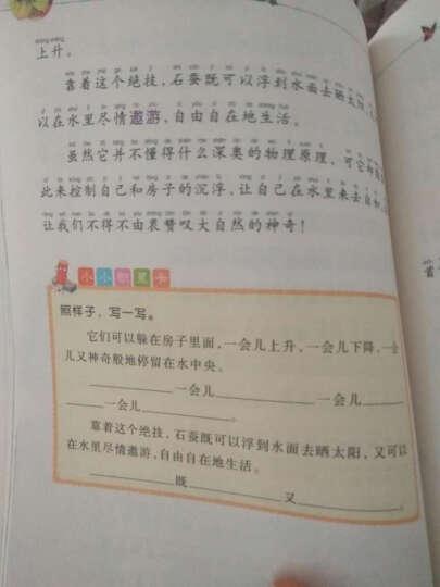 昆虫记(彩绘注音版 儿童读物 小学生课外书读物)/新阅读小学新课标阅读精品书系 晒单图