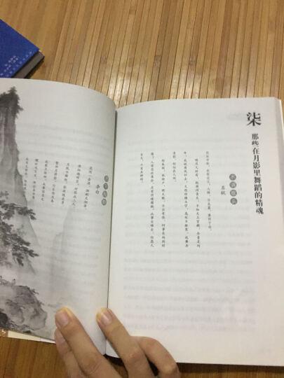 依然旧时明月:唐诗宋词中的生命和情感(增订版) 晒单图