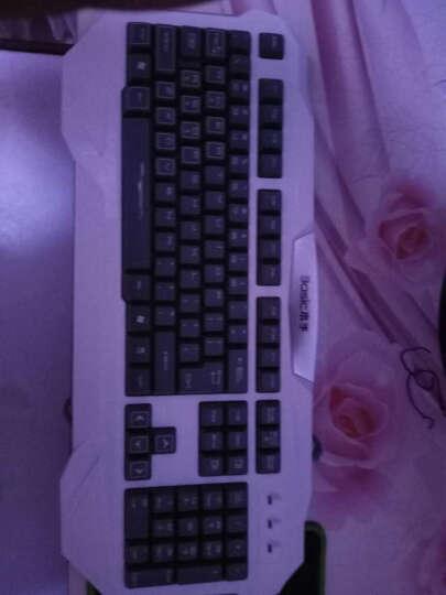 本手(basic)键鼠套装键盘鼠标套装T8600灰白U+U 晒单图