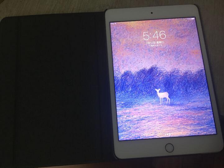 【二手8成新】Apple iPad mini 4 苹果二手平板电脑 7.9英寸 WLAN版 银色 WiFi版 32G 晒单图
