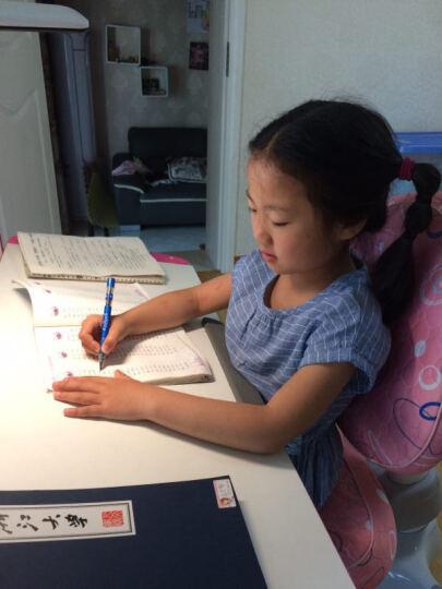 歌珊 正姿护眼笔第八代正品 中小学生多功能视力健康笔 儿童智 握姿坐姿矫正器 浅蓝色 晒单图