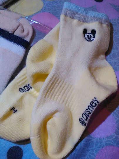 迪士尼儿童袜子春夏薄款网眼棉袜男女童中筒宝宝短袜 00117 男童5双 14-16cm/适合2-4岁 晒单图