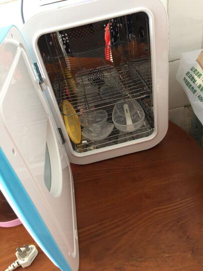 MAIJI奶瓶消毒器带烘干紫外线消毒柜婴儿消毒锅宝宝玩具内衣杀菌收纳 蓝白米奇双灯管加强型 晒单图