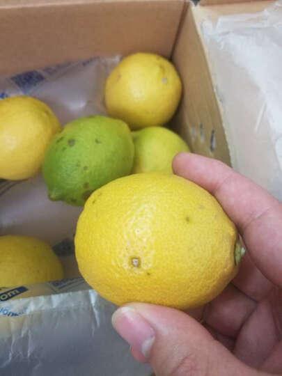 海南大青柠檬 8个装 单果约70-100g 新鲜水果 晒单图