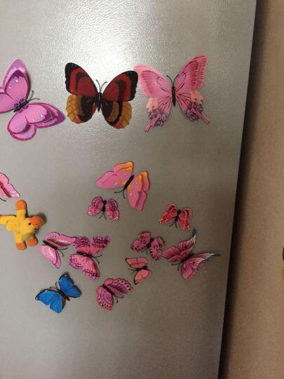 喜艾林 12只双层套装3d立体墙贴套装仿真昆虫磁性冰箱贴窗帘家装装饰品别针蝴蝶贴纸 12只粉色双层磁铁款 晒单图