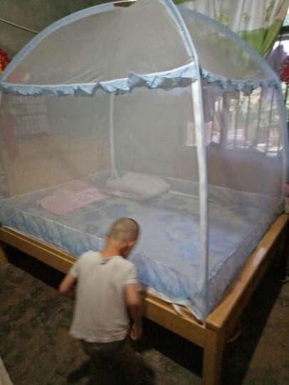 辰羽  升级版蚊帐蒙古包三开门圆顶加高加密蚊帐1.2米1.5米1.8米床有底拉链可折叠支架 花仙谷(蓝色) 1.5m床 晒单图