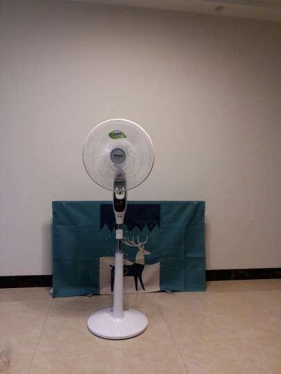 艾美特(Airmate) FS40105QR 五叶遥控驱蚊扇/落地扇/电风扇 晒单图