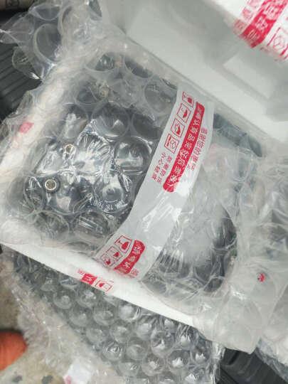 祥瑞德.仪器(XIANGRUIDE.2012) mf500型指针万用表高精度机械外磁星牌 MF500标配+电池9V,2号1.5V 晒单图