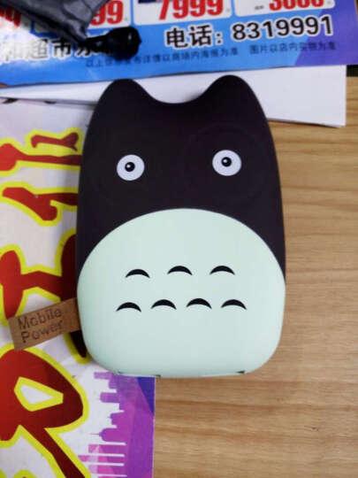 百汇铭 迷你充电宝10000毫安移动电源超薄小巧可爱卡通龙猫大容量便携聚合物电芯 小熊猫 晒单图