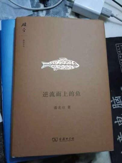 碎金文丛:逆流而上的鱼 晒单图